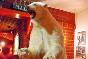 マック・ビールのパブにいたシロクマ